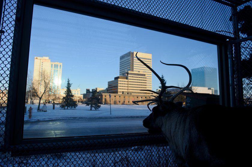 Nextdoor app aims to connect neighborhoods in Anchorage