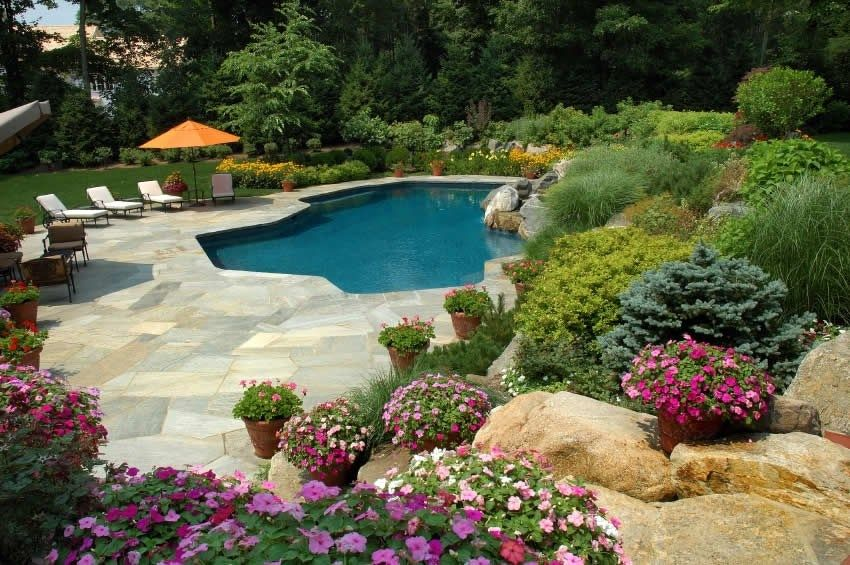 Landscaping Ideas Around Pool Filters Landscaping Around Pool Backyard Pool Landscaping Pool Landscaping