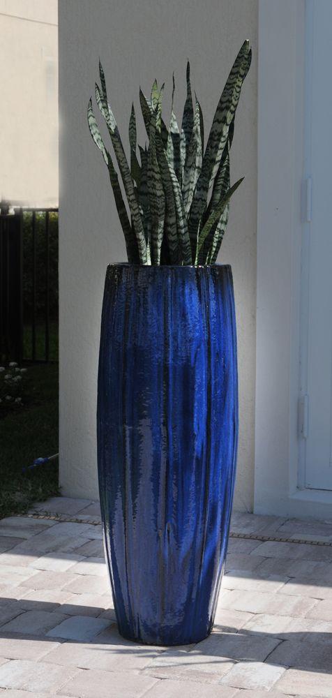 Pamela Crawford Used Cobalt Blue Planter To Accent This Jupiter Florida Pool Deck See Over 2000 Phot Blue Planter Small Backyard Gardens Florida Landscaping