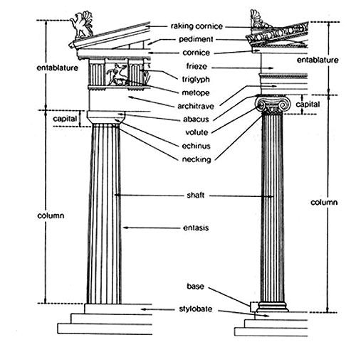 Anatomy of Doric and Ionic Columns: Doric has no base, an
