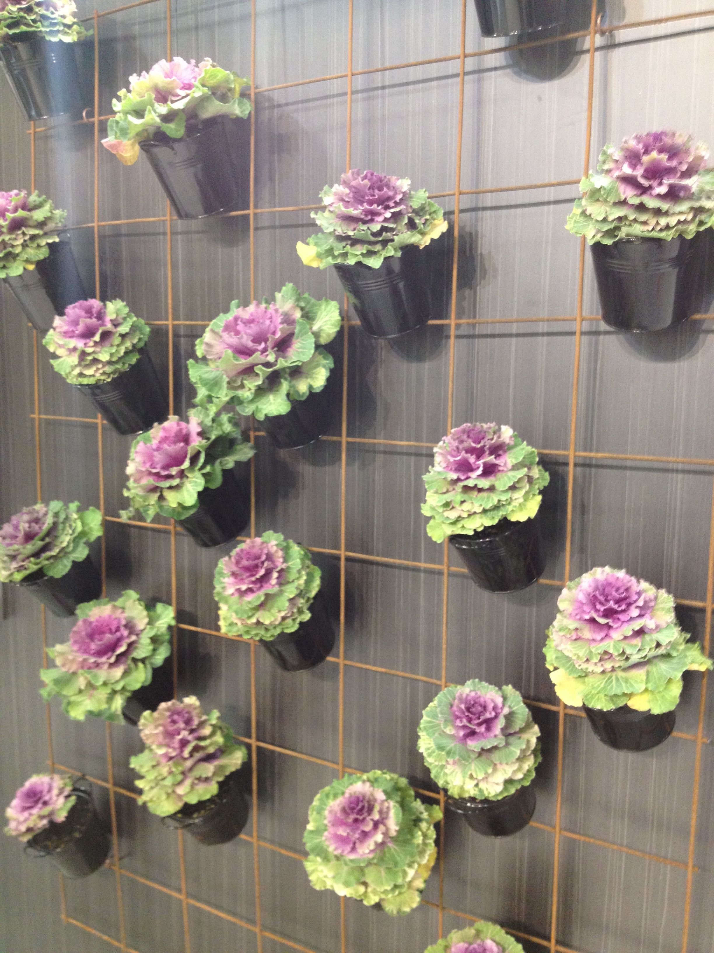 vertical garden kitchen feature easy diy idea for your home