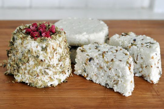Make your own goat cheese