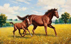 Обои весна лошади (11 обоев) на рабочий стол | 187x300