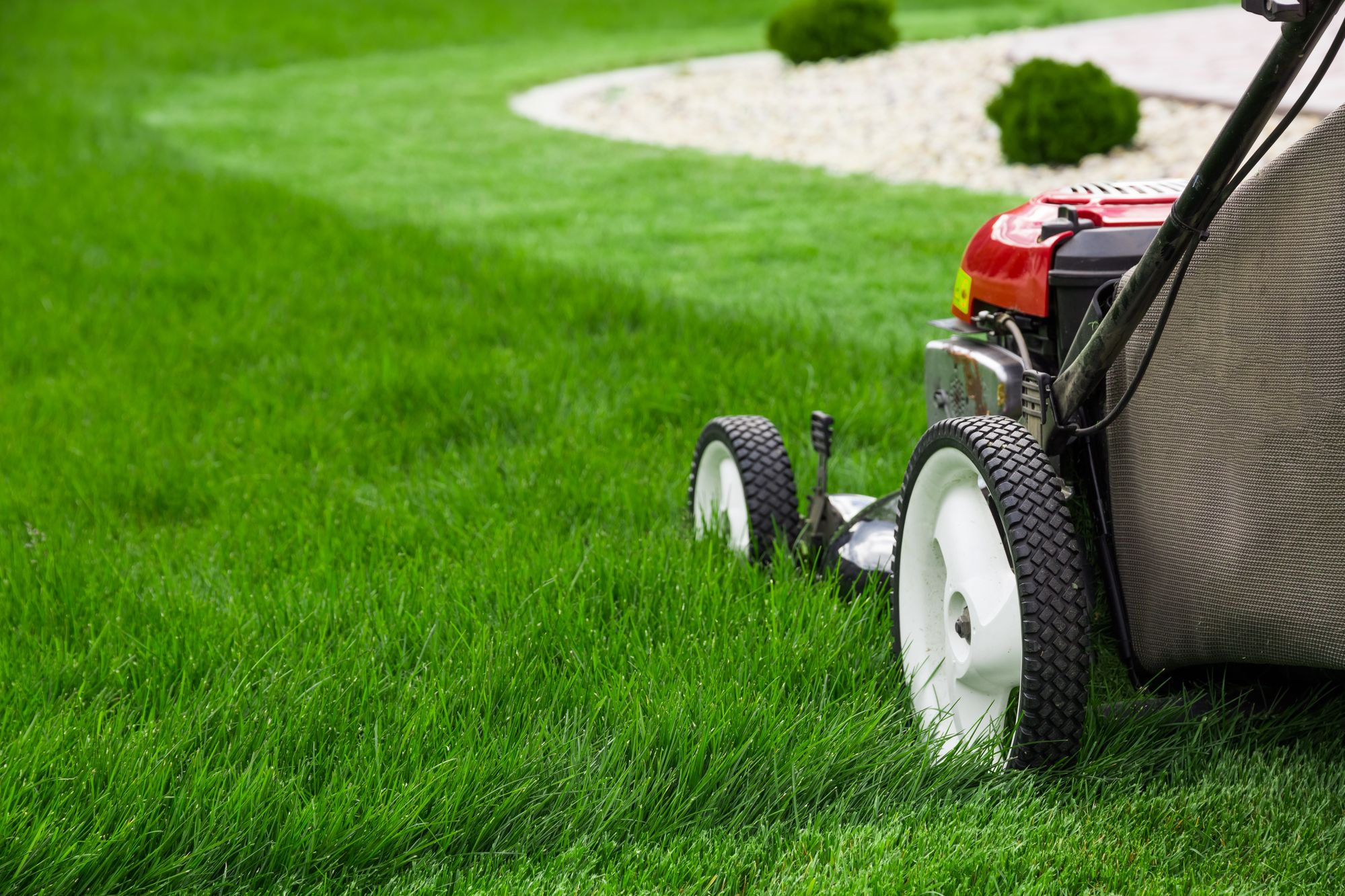 Lawn Mower Safety Tips Lawn Care Lawn Care Tips Lawn Maintenance