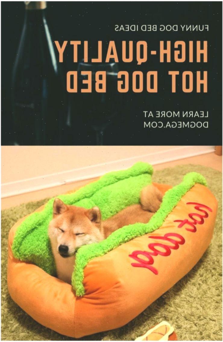 Photo of Funny Dog Bed #goodanime #anime #animebunwallpaper #Bed #dog #