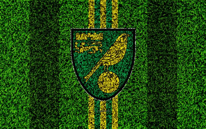 Download Wallpapers Norwich City FC, 4k, Football Lawn