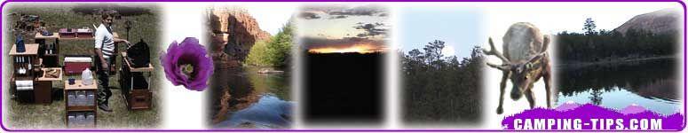 Go camping colash image