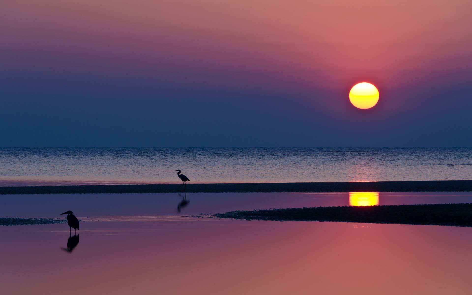 Обои картинки фото природа, небо, солнце, море, закат ...