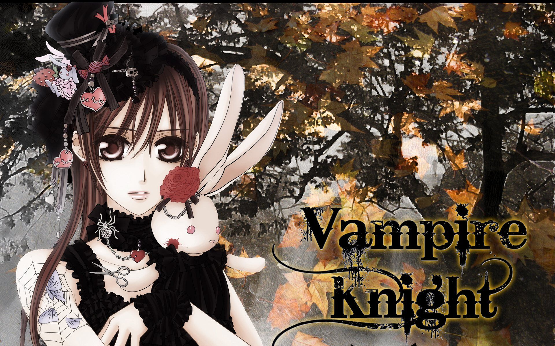 Vampire Knight Chibi Wallpapers Wallpapers Wallpapers And Vampire Knight Anime Vampire