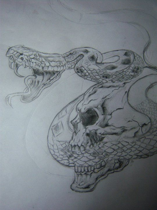 Serpiente Cascabel Tatuajes Y Arte Pinterest Tattoo Sketches