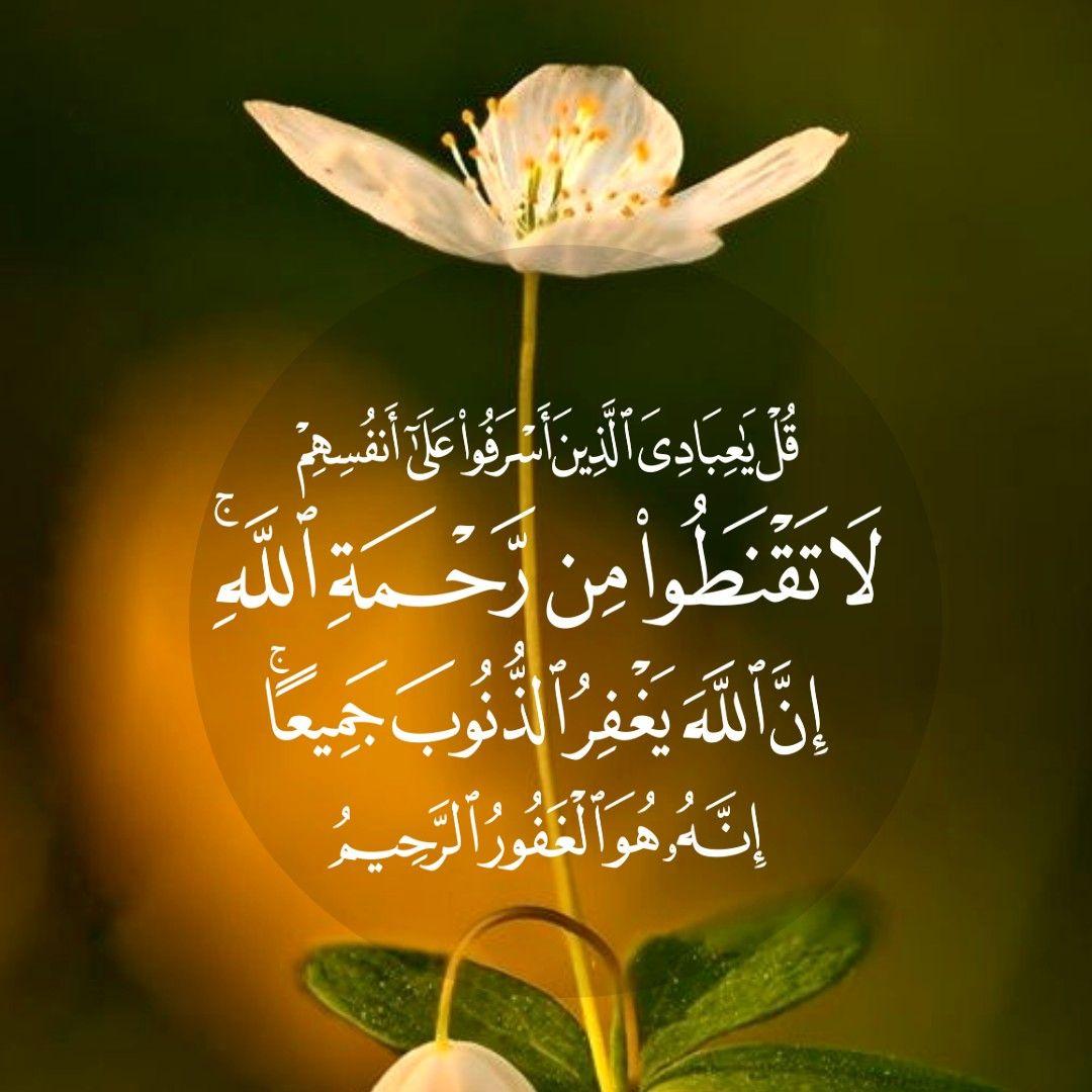 قرآن كريم آية قل يا عبادي الذين أسرفوا على أنفسهم لا تقنطوا من رحمه الله Quran Verses Calm Artwork Quran