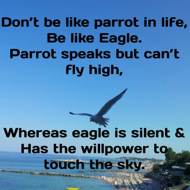 Don't be like parrot in life, Be like Eagle. Parrot speaks but can't fly high, Whereas eagle is silent & Has the willpower to touch the sky.