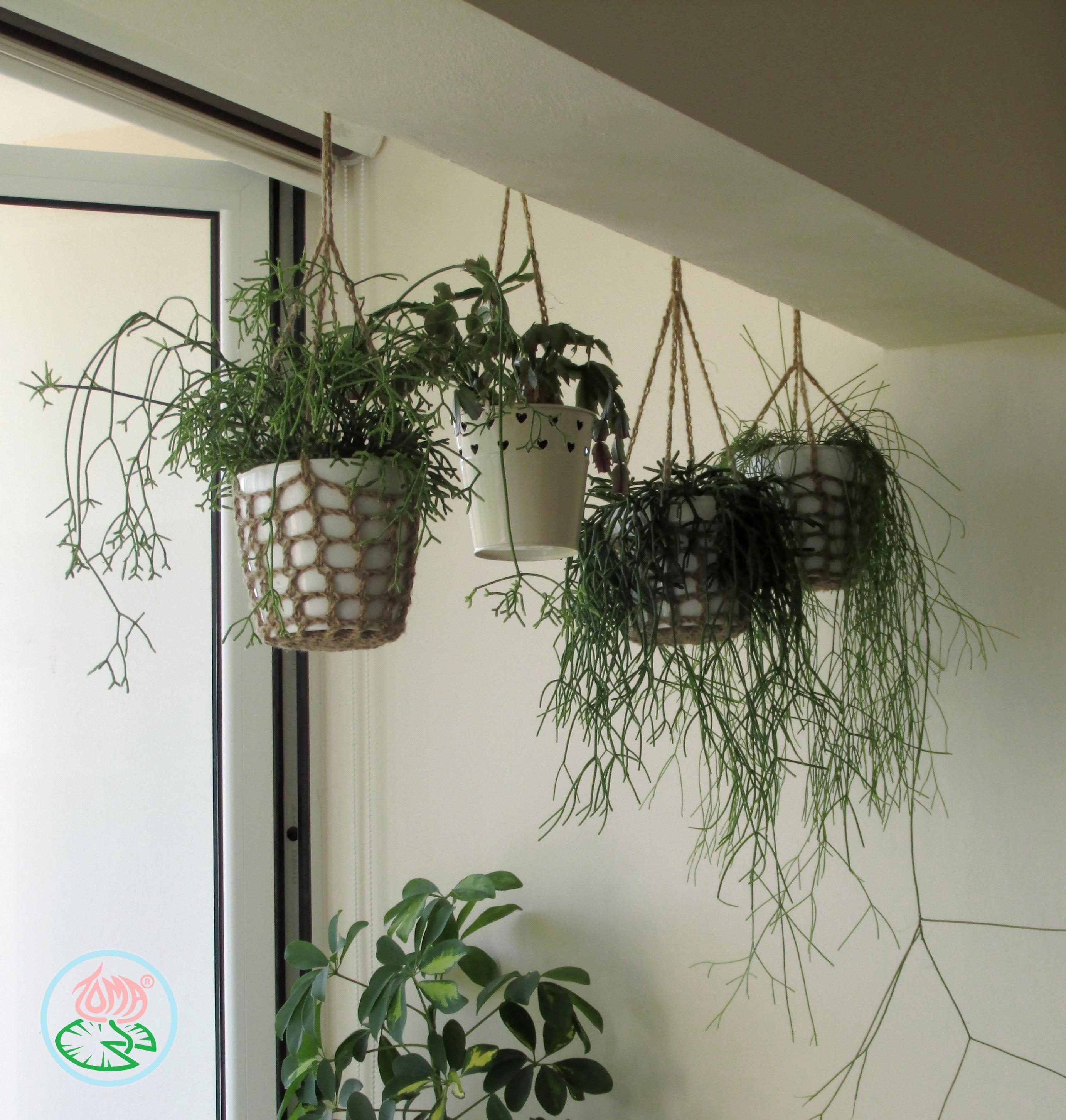 Free Pattern Crochet Hanging Plant Pot Holder Hanging Plants