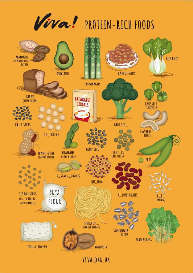 Illustrated Protein Nutritional Poster Nutrition Poster Nutrition Recipes Nutrition
