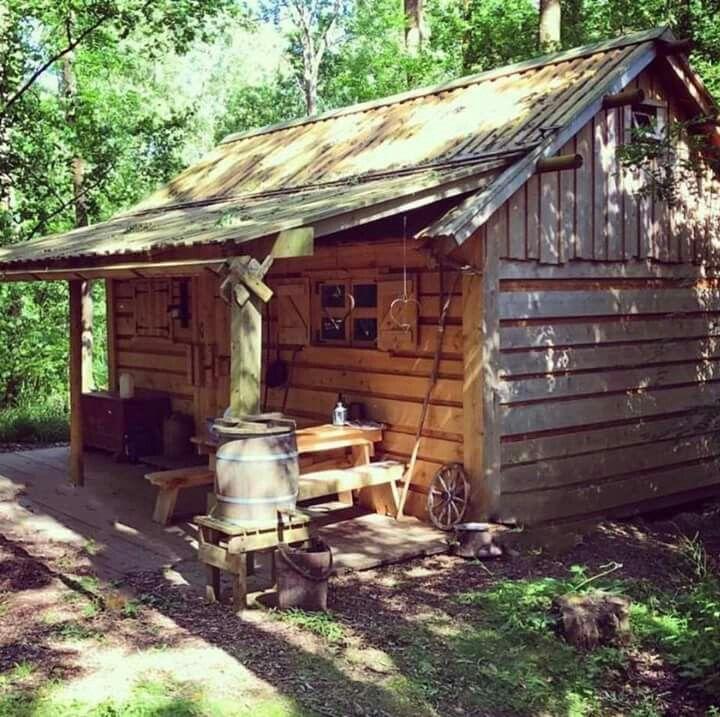 Pin de lobo estepario en renta de caba as en la huasteca for Modelos de cabanas rusticas