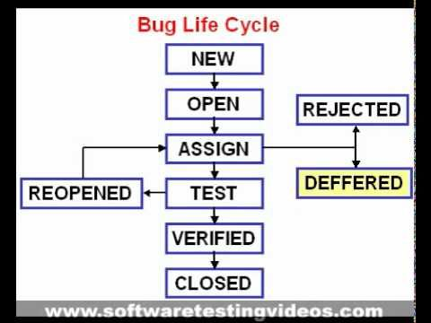 Bug Life Cycle Quality Testing If You Want To Detect And Resolve