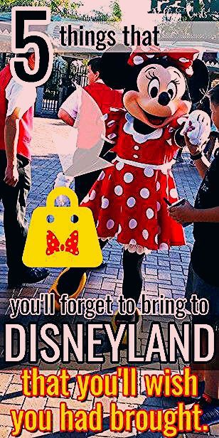 Photo of 5 things you Might not think to bring to Disneyland or an Amusement Park