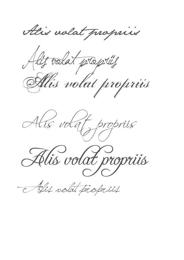 Alis Volat Propriis She Flies With Her Own Wings Also The Motto
