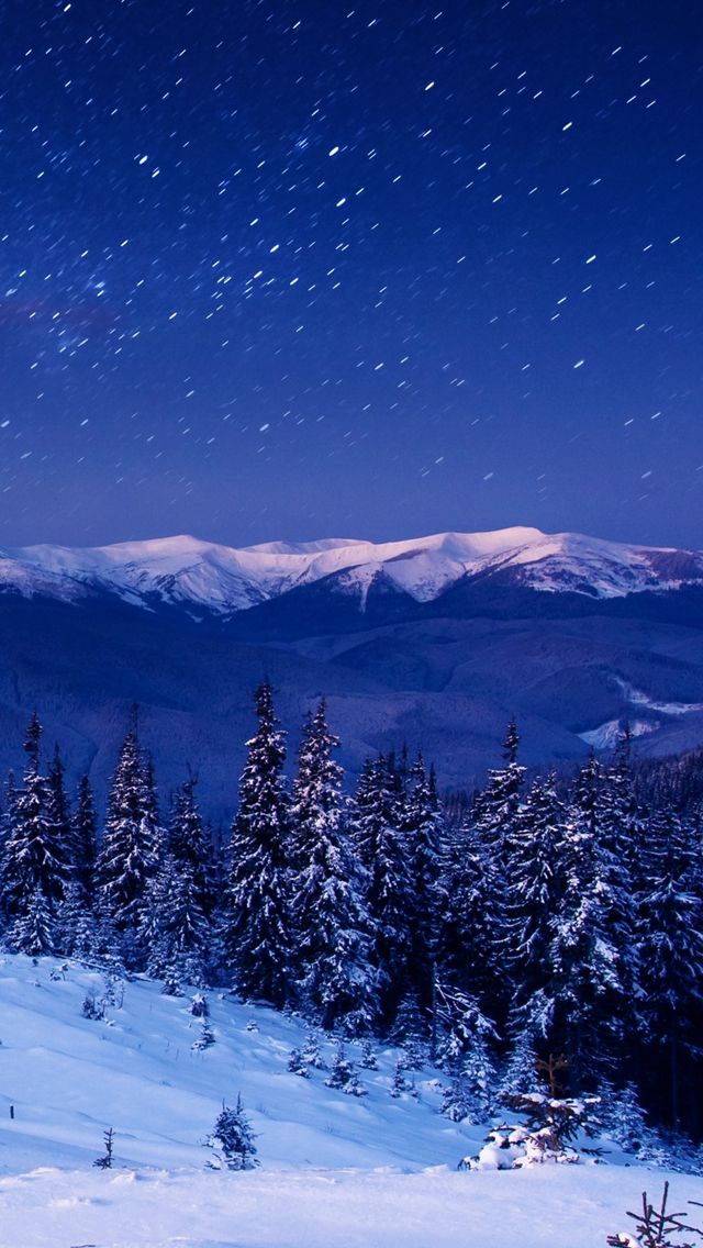 Star Forest Night Home Mountains Trees Iphone Wallpapers Winter Scenery Winter Landscape Winter Scenes
