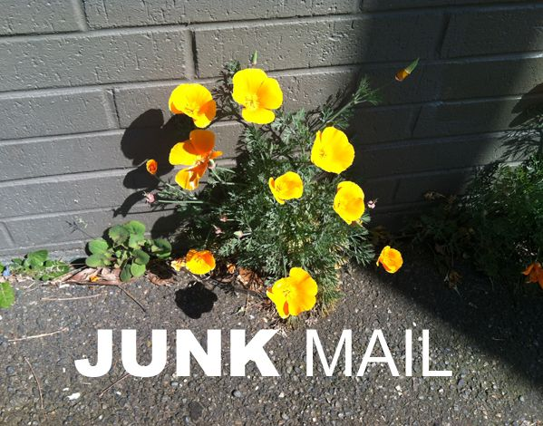 The emotional appeal of junk mail and a link to opt out of receiving it forever.