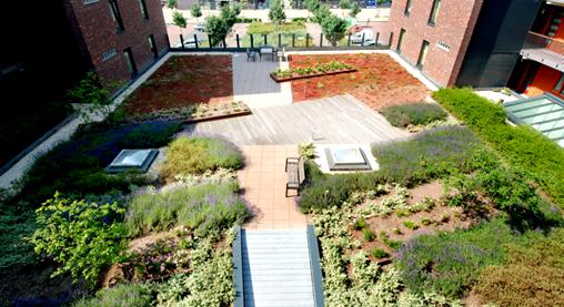 Semi Intensive Green Roofs