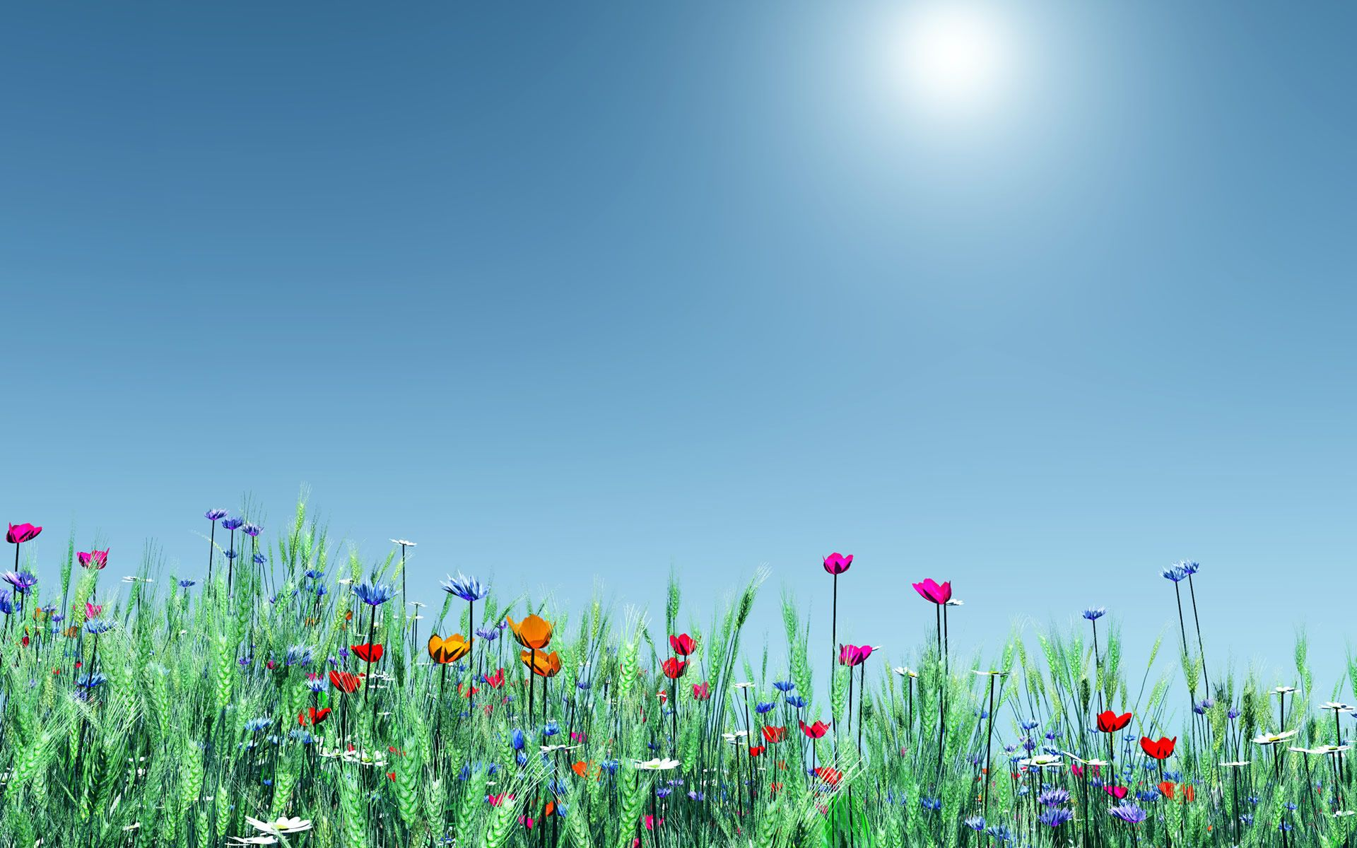 Spring flowers wallpapers widescreen natures wallpapers spring flowers wallpapers widescreen mightylinksfo