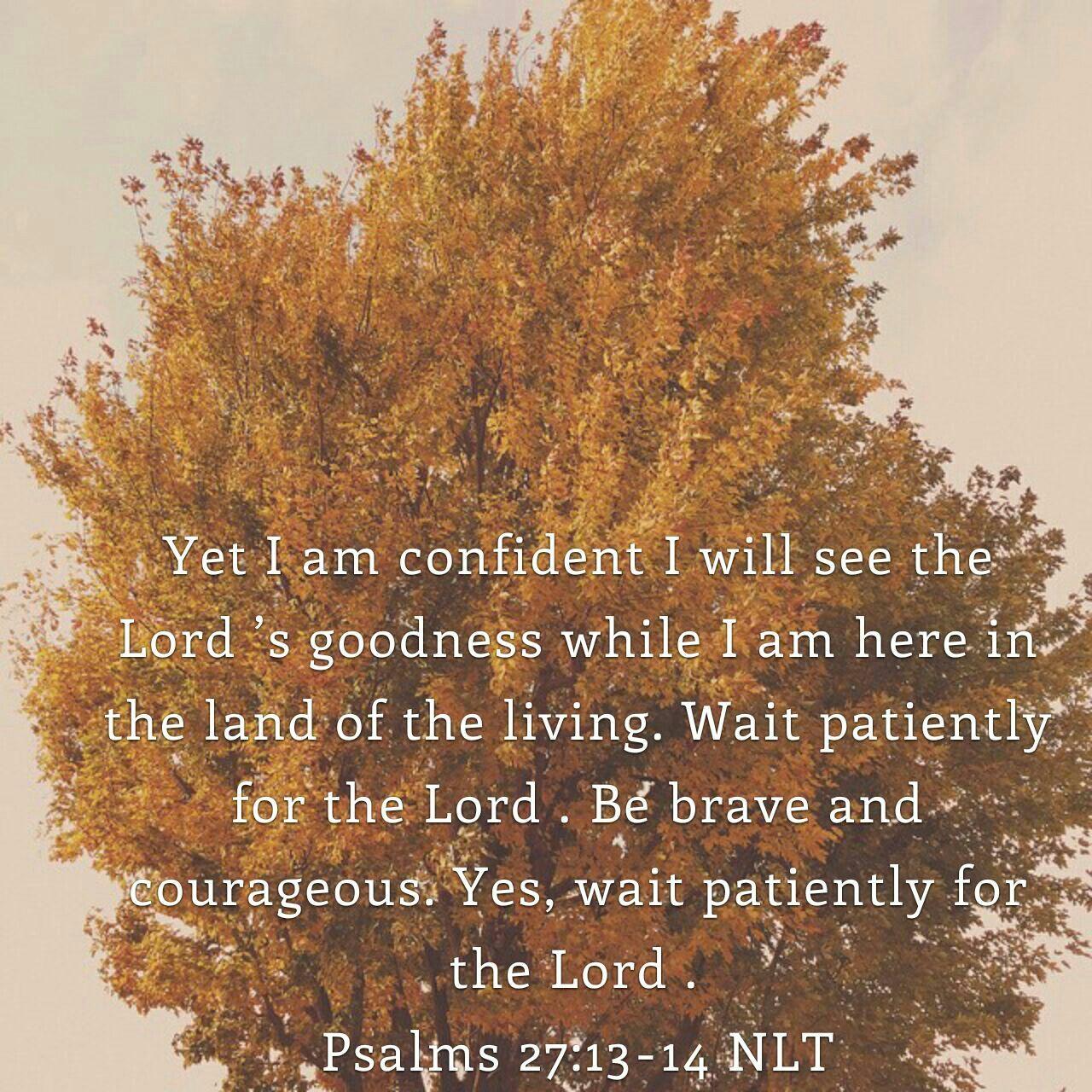 Psalm 27:14,15 | Quotes | Romans 12, Romans 15, Bible verses