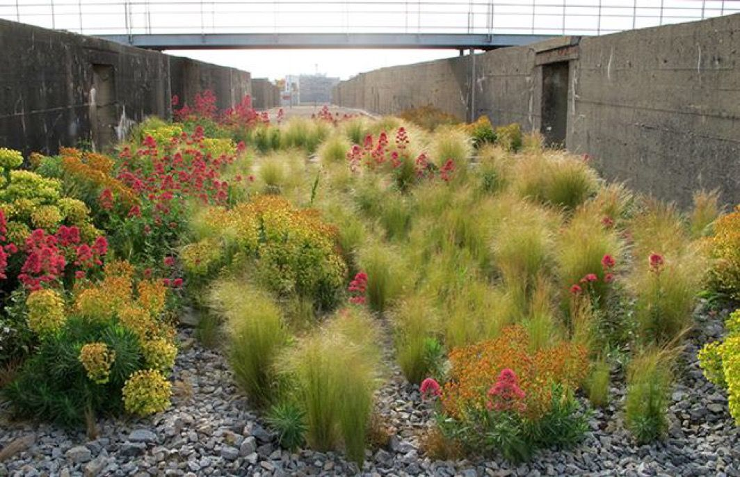 Gilles Clement verde Pinterest Jardines, Paisajismo y Jardinería