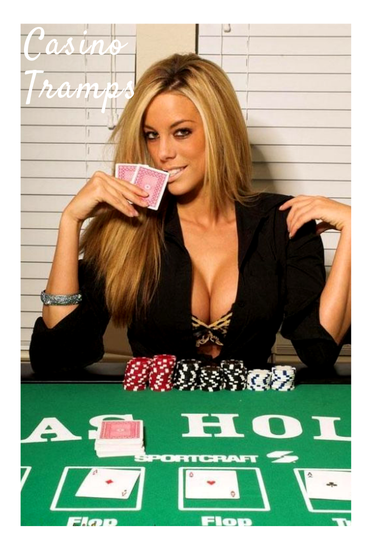 казино xo в минске