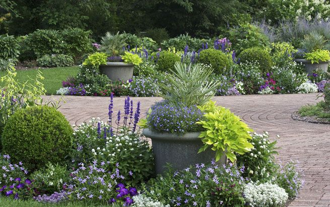 Palmen Fur Den Garten Winterharte Arten Und Pflegetipps Palmen Garten Gartendesign Ideen Bepflanzung