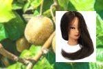 Avocado, Avocado Tree – Pflanzen und Pflegen – Geschenke – #Avocado #A … – A