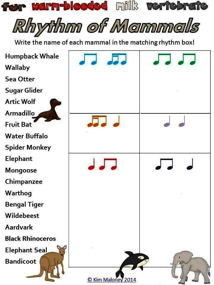 FOUR sets of Rhythm Worksheets,  RHYTHM: Bundle of FOUR sets of Rhythm Worksheets, RHYTHM: Bundle o