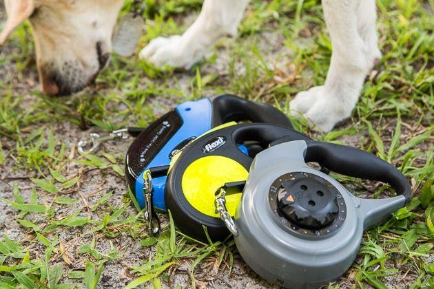The Best Retractable Leash Retractable Leash Retractable Dog