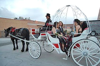 Lake Tahoe Carriage Rides - Breathe in the fresh air as you are guided along the lake, watching the wildlife and the sparkling waters. Enjoy a mesmerizing ride from Borges Family Carriage Ride.