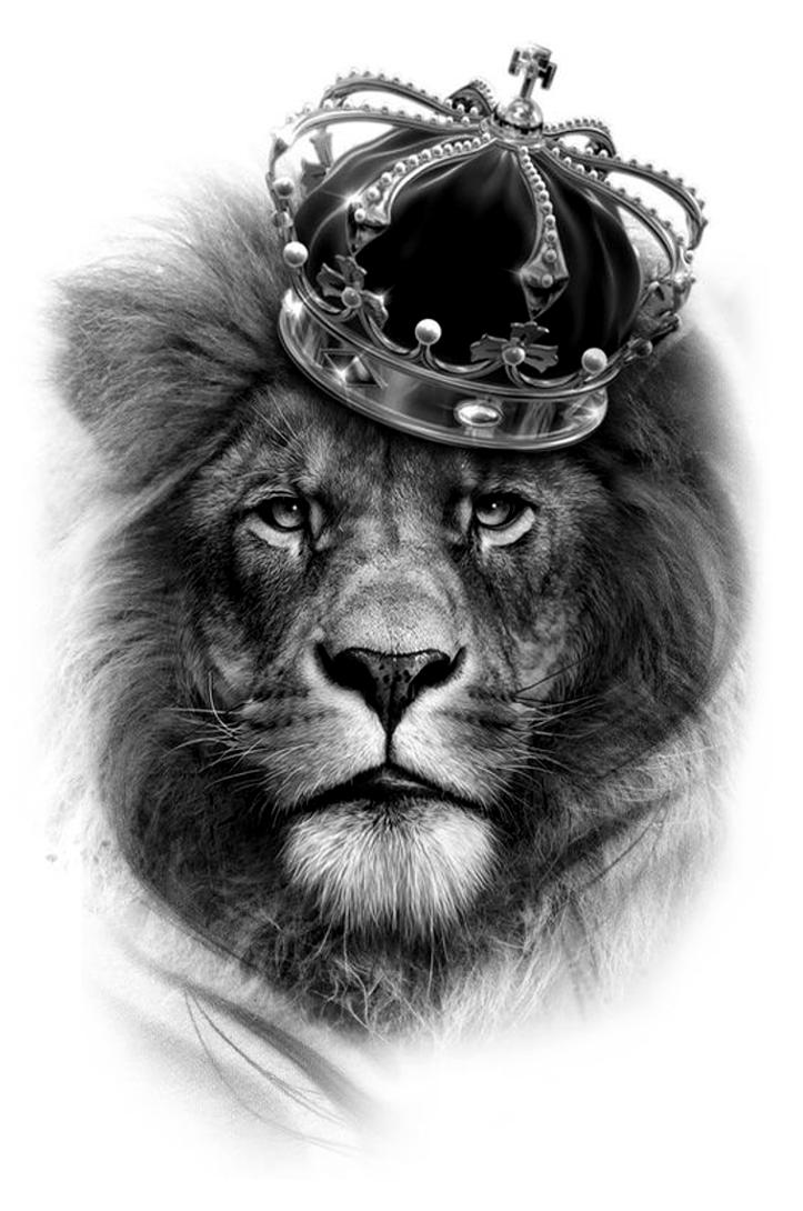 Pin By Hoang Văn Hung On Top Mens Tattoos Lion Head Tattoos Lion Tattoo With Crown Lion Tattoo