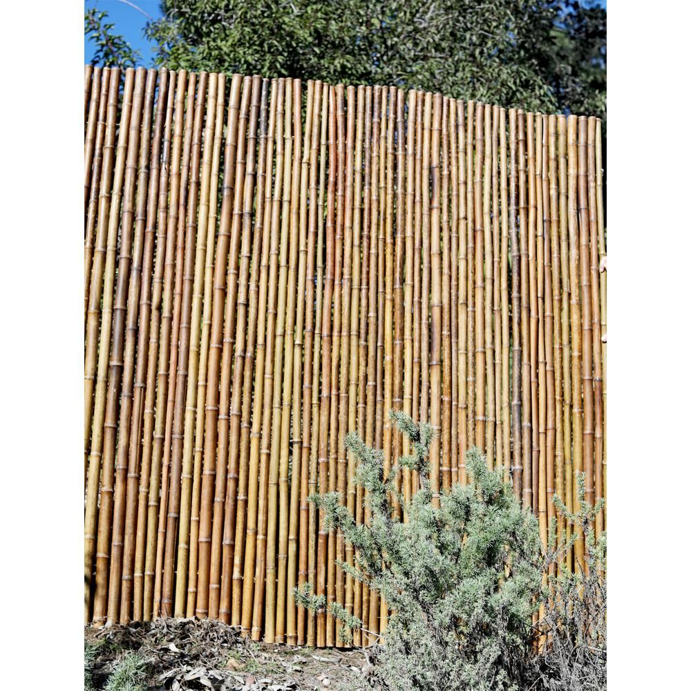 Backyard XScapes 6 ft. H x 8 ft. W x 1 in. D Caramel