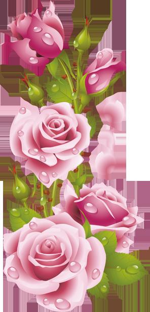 Pin De Dawndonyou En Wallpaper Ideas Arte Con Flores Clipart De Flor Flores Pintadas