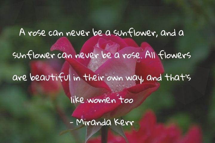 20 Quotes Bunga Inpiratif Motivatif Romantis Bermakna Dalam Sayapusing Com