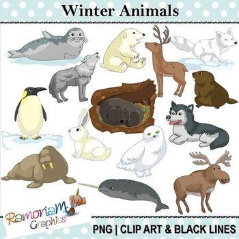 Winter Artic Animals Clipart Animal Clipart Artic Animals Arctic Animals