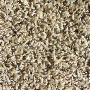 Frieze Carpet Frieze Carpet Basement Carpet Diy Carpet