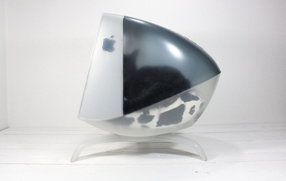 You'll Fight Your Cat To Sleep Inside the Mac Apple Studio Display