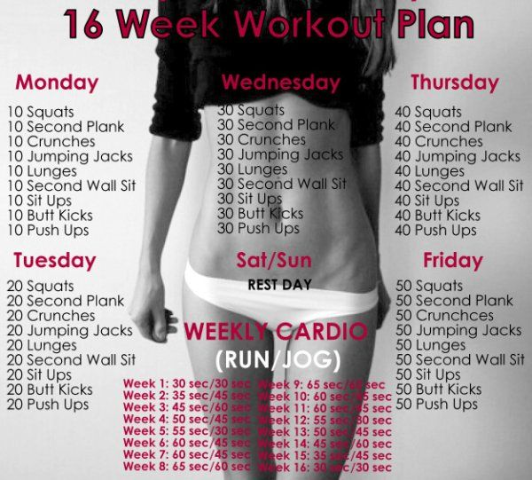 How To Build Muscle: 16 Week No Gym Home Workout Plan