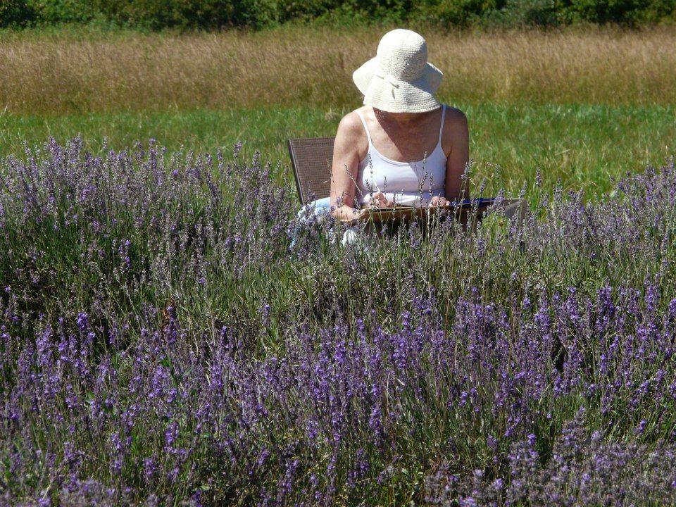 Lavender Fields Farm Richmond Va Lavender Lavender Fields Richmond Va