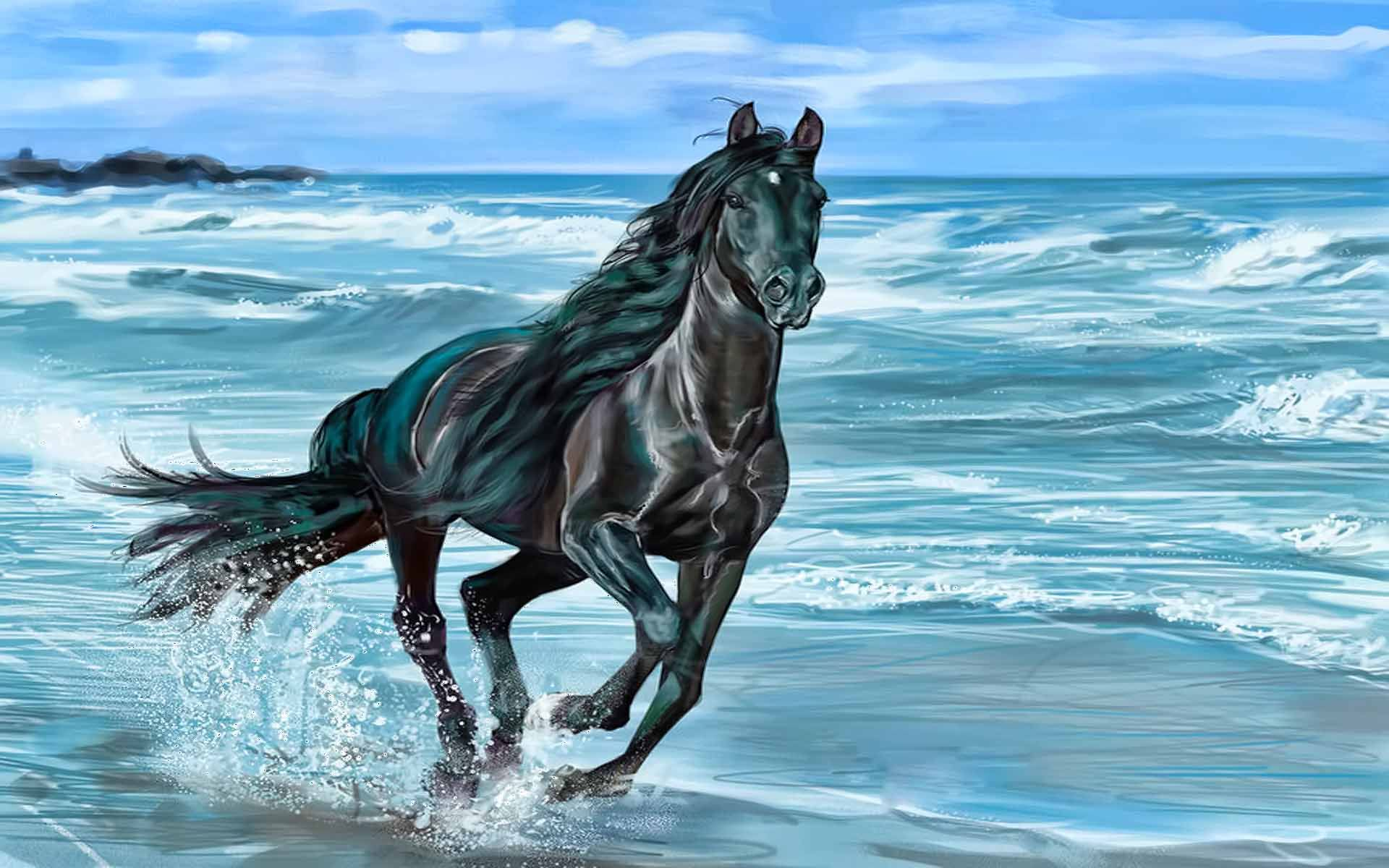 Horse Running On Beach wallpapers HD Horses, Black