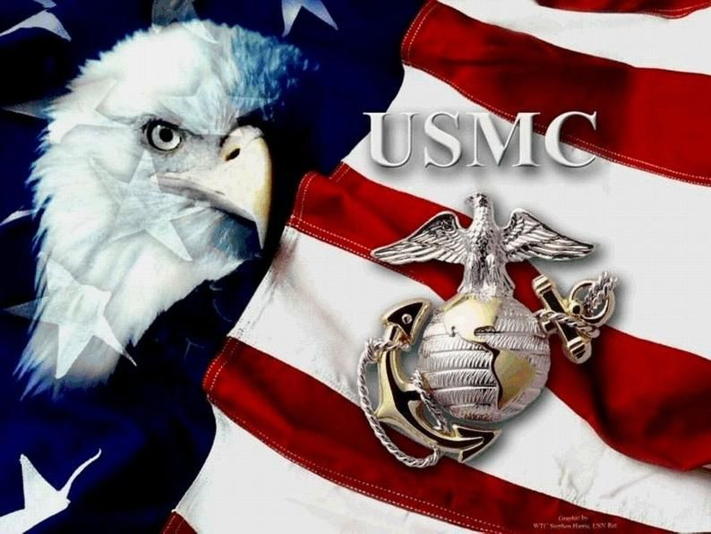 Military Marine Symbol With U S Flag On One 16 Nch Fabric Etsy In 2021 United States Marine Corps Once A Marine Marines Hymn