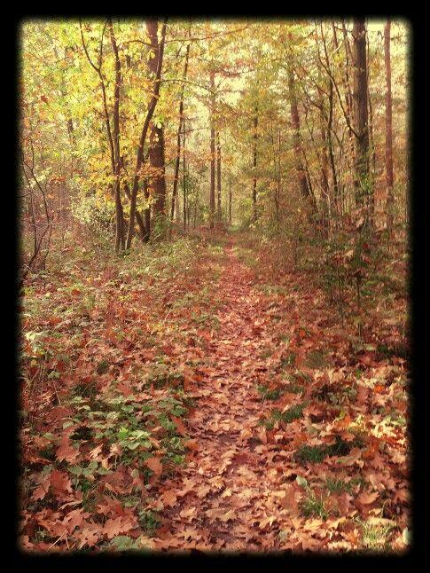 Groot Engelenburg in de herfst