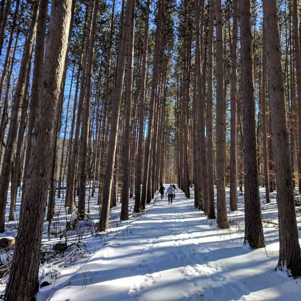 28 Winter Walks Around Rochester Day Trips Around Rochester Ny