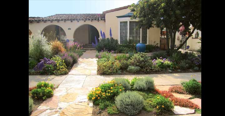 Mediterranean Waterwise Los Angeles Closup Garden Landscape