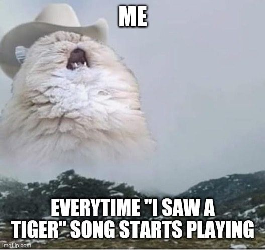 Pin By Tori J On Tiger King In 2020 Stupid Memes Funny Memes Cheesy Memes