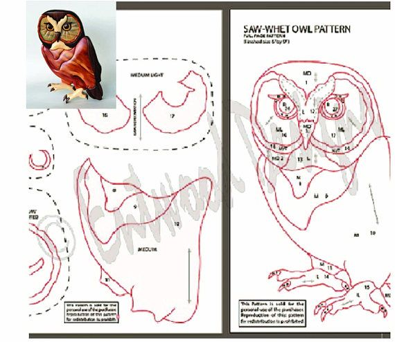 Saw Whet Owl Intarsia Scrollsaw Pattern Pdf Digital Download